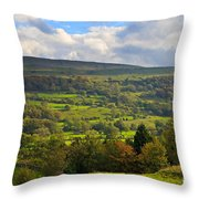 Wensleydale Near Westholme Bank In The Yorkshire Dales Throw Pillow