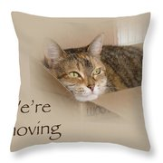 We're Moving Notification Greeting Card - Lily The Cat Throw Pillow