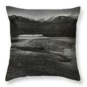 We're Not The Same Throw Pillow