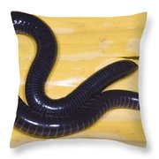 West African Caecilian Throw Pillow