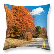 West Virginia Wandering 4 Throw Pillow