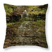 West Virginia Waterfall Throw Pillow