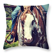 Western Paint Horse Throw Pillow