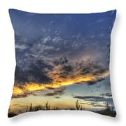 Western Skies  Throw Pillow