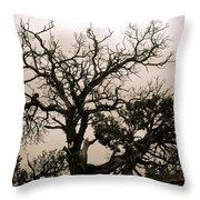 Western Winter Tree Throw Pillow