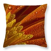 Wet Blumen Throw Pillow