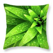 Wet Foliage Throw Pillow