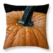 Wet Morning Throw Pillow