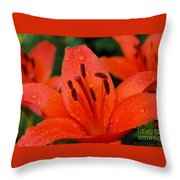 Wet On Red Throw Pillow