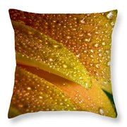 Wet Pettals Throw Pillow