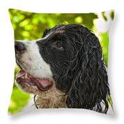 Wet Puppy 2 Throw Pillow