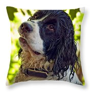 Wet Puppy Throw Pillow