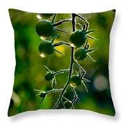 Wet Tomatoes Throw Pillow