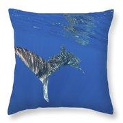 Whale Shark Tail Near Surface With Sun Throw Pillow