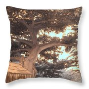 Whaler's Cabin Throw Pillow by Jane Linders