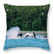 Whales Bubble Net Feeding Throw Pillow