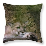 What A Paw Throw Pillow