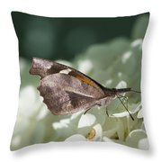 What A Schnoz On That American Snout Butterfly Throw Pillow