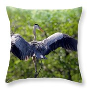 What A Wingspan Throw Pillow