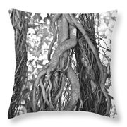What Trees Know Throw Pillow by Betsy Knapp