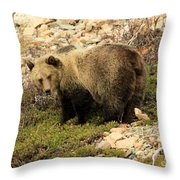 What's That I Smell? Throw Pillow