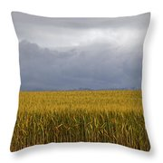 Wheat Field And Storm Throw Pillow
