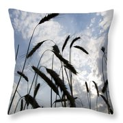 Wheat With Blue Sky Throw Pillow