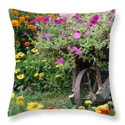 Wheel Of Color Throw Pillow