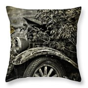 Wheels And Roots  Throw Pillow