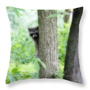 When Raccoon Dream Throw Pillow