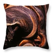 When The Oldest Living Things On Earth Die Throw Pillow
