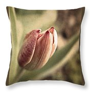 When The Sun Comes Out Throw Pillow