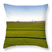 Where The Grass Is Growing Throw Pillow