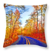 Where The Road Snakes Throw Pillow