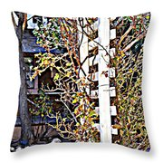 Where The Roses Cling Throw Pillow