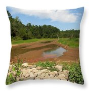Where The Water Throw Pillow