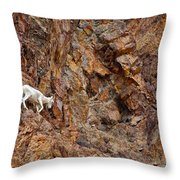 Where Wolves Don't Tread Throw Pillow