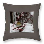 Where's Spring Throw Pillow