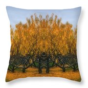 Which Way Throw Pillow by Susan Candelario
