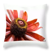 Whirly Girly Throw Pillow