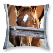 Whiskers 1 Throw Pillow