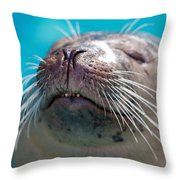 Whiskers Of A Seal Throw Pillow