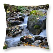 Whisketown Stream In Autumn Throw Pillow