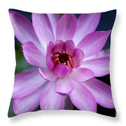 Whisper Sweet Nothings Throw Pillow