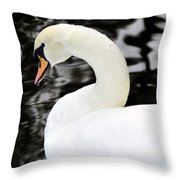 Whistling Swan Throw Pillow