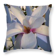 White And Pink Magnolia Throw Pillow