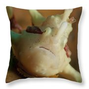 White And Red Clown Frogfish, Bali Throw Pillow by Mathieu Meur