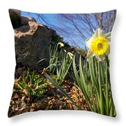 White And Yellow Daffodil Flower Throw Pillow