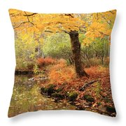 White Ash And Stream In Autumn Throw Pillow