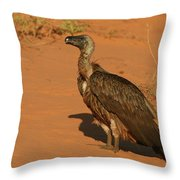 White-backed Vulture Throw Pillow